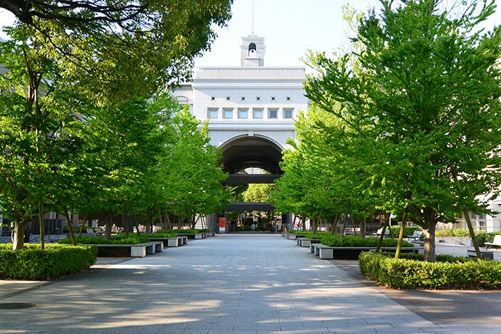 京都大学 Kyoto University