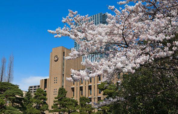 東北大学(Tohoku