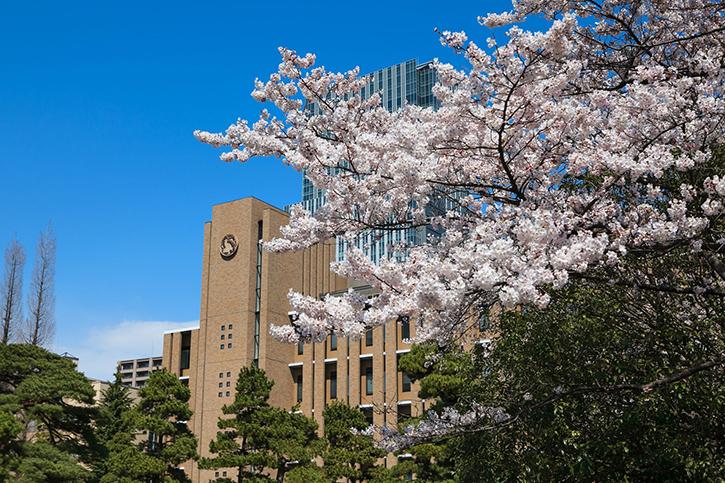 東北大学(TOHOKU University)